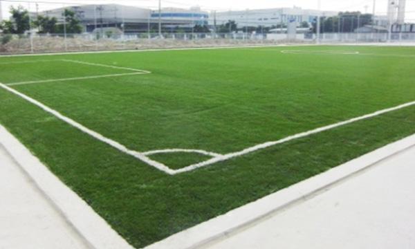 สนามฟุตบอลหญ้าเทียม สีเดี่ยว